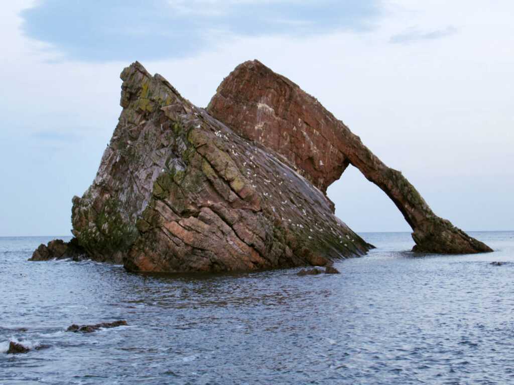 Image showing Bow Fiddle Rock completely cut off by the tide. An archway has formed under the rock and many birds sit on the edge of the rock.