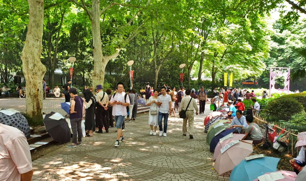 The Shanghai People's Park Marriage Market. Parents and grandparents display adverts of their unmarried children on umbrellas that are lining the pathway - a unique aspect to this Shanghai 3-day itinerary!
