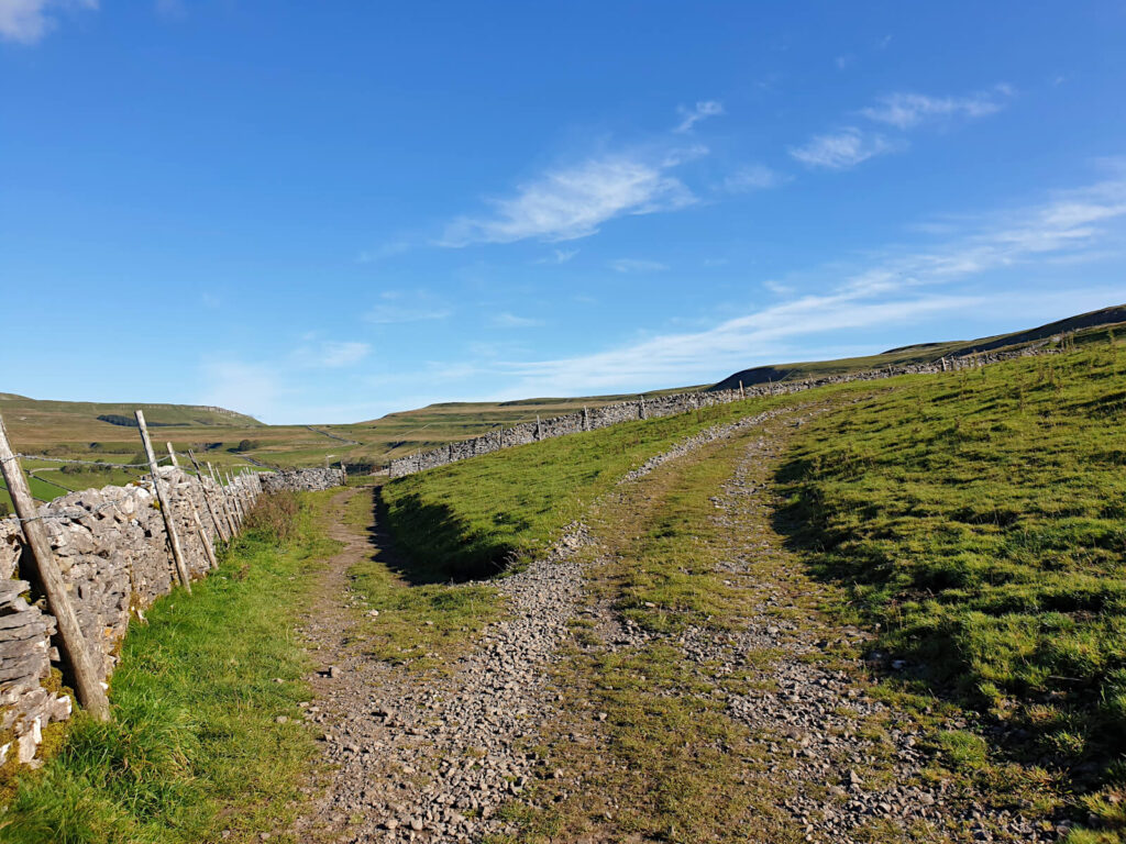 The path splits here, keep left and then turn right after passing the drystone wall. Green fields as far as the eye can see.
