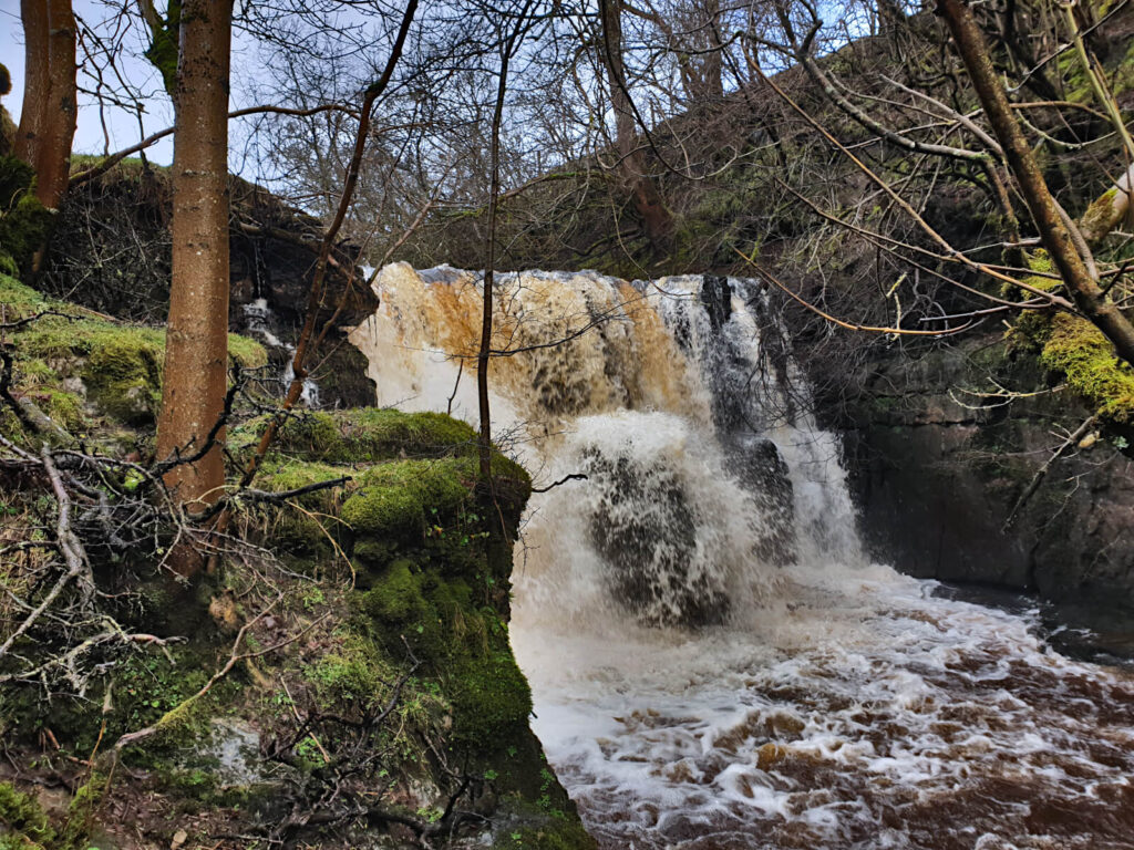 Currack Force is hidden behind a lot of trees and bushes. A stunning Yorkshire Dales waterfall nevertheless!