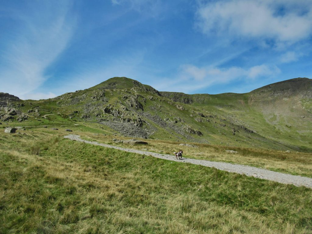 Looking up at Brown Pike, Buck Pike and Dow Crag from Walna Scar Road at the start of this Walk