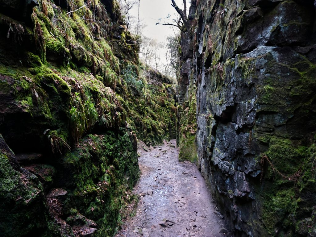 Inside Lud's Church, the narrow, moss-covered chasm is mysterious and other-worldly. As this Lud's Church Walk continues through the deep ravine you'll feel like you're on an alien planet!