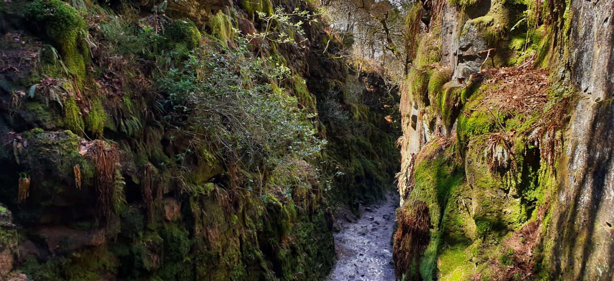 Lud's Church Walk (For An Other-Worldly Experience!)