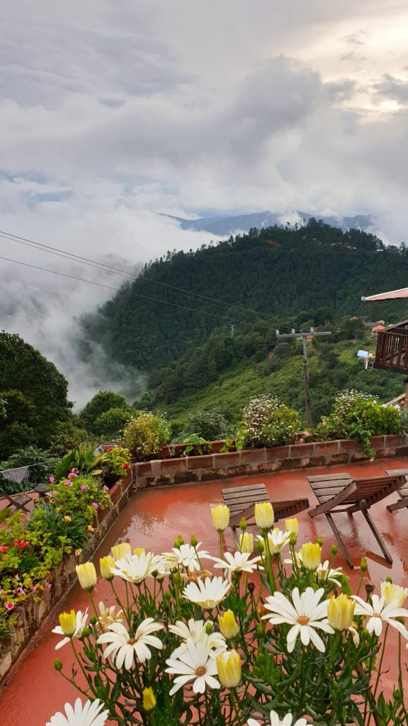 Amazing views of the mountains and clouds from Cabanas La Cumbre, San Jose del Pacifico. The clouds are forming from the trees in the forest below the hostel. Flowers of many colours line the terraces in the photo's foreground