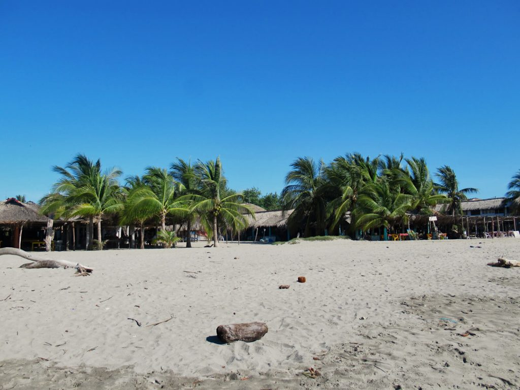 Palm trees and beachfront restaurants line the beach in rustic Chacahua